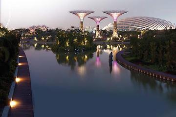 Entrada a los Jardines de la bahía en Singapur con transporte incluido