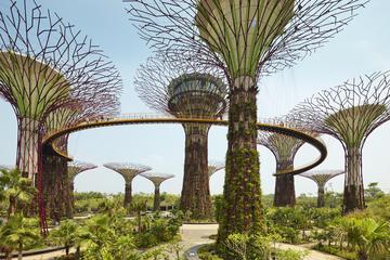 Excursion privée: visite de l'île de Singapour avec la prison de...