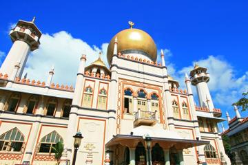Singapore Shore Excursion ...