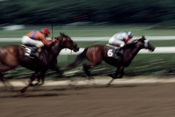 Singapore Turf Club: corse di cavalli con accesso alla VIP Lounge