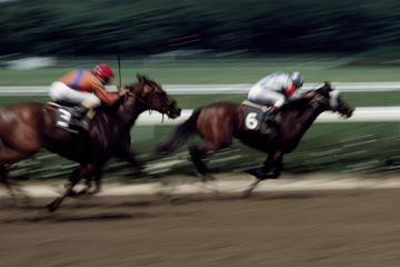 Singapur Turf Club: Pferderennen mit VIP-Zugang zur Lounge
