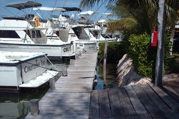 Deep Sea Fishing Charter in Cancun