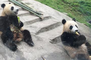 Kung Fu Panda 3 Temple Tour