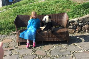 Private Day Trip to Dujiangyan Panda Center with Panda Holding Option