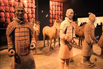 Private Xi'an tour: Terracotta Warriors, Big Wild Goose Pagoda, Muslim Street