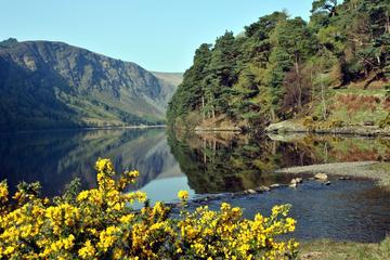 Dagstur til fjellene i Glendalough og Wicklow fra Dublin