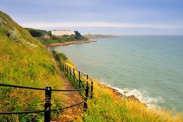 Excursion d'une demi-journée à destination de la Baie de Dublin et du...