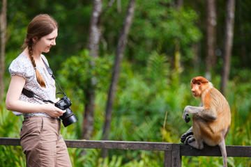 3-Day Tour from Sabah: Sandakan Sightseeing and Wildlife Experience...