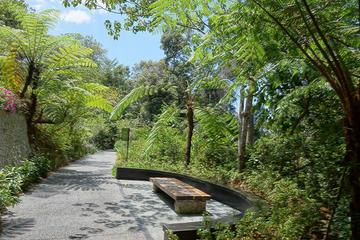 Penang Hill Habitat Nature Walk Including Lunch