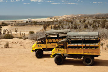 Baja Ranch Tour and Camel Safari from...
