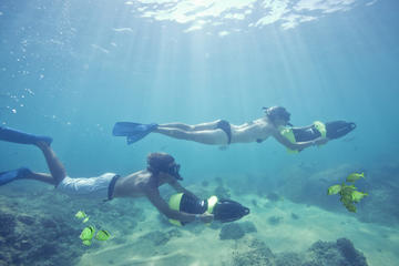 Los Cabos Sea Adventure: Snorkeling...