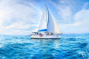 Private Luxury Sailing Cruise in Los Cabos with Lu