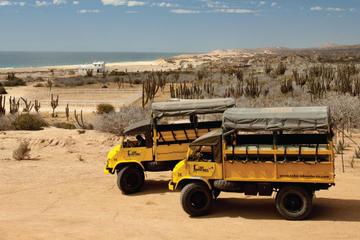 Safari en camello y excursión en rancho de Baja desde Los Cabos