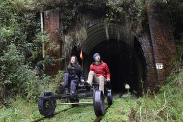 10-Tunnel Rail Bike Tour from...
