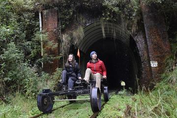 5-Tunnel Rail Bike Tour from Taumarunui