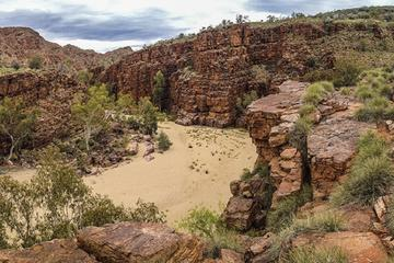 East MacDonnell Ranges 4WD Day Trip...