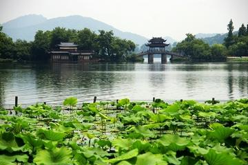 The highlights of Hangzhou 1 Day  Shanghai-Hangzhou-Shanghai