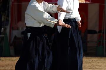 Half-Day Aikido Martial Arts Lesson in Tokyo