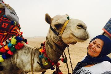 5 hours Giza pyramids camel ride andlunch