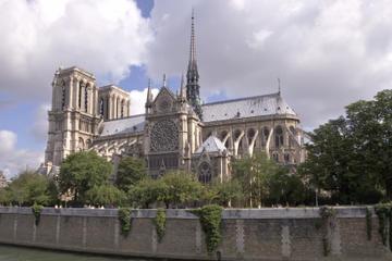 Evite la cola: Excursión de medio día a pie con la Catedral de Notre...