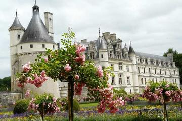 Evite las colas: Excursión de día a Chateaux du Chambord, Chenonceau...