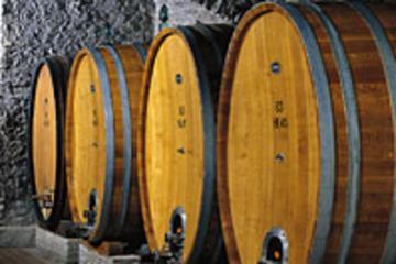 Frascati vinprovningstur från Rom