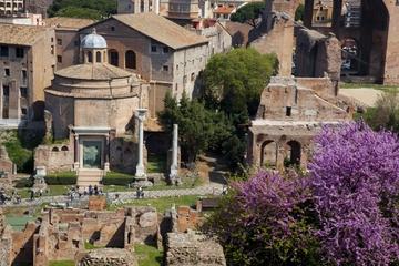Roma supereconômico: Excursão a pé...