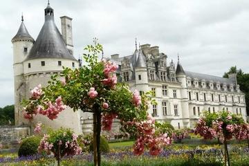Sla de wachtrij over: dagtrip vanuit Parijs naar Châteaux de ...