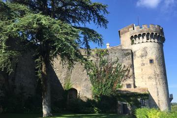 Tour di mezza giornata al castello di Bracciano da Roma con pranzo