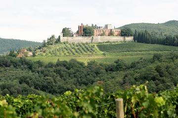 Tuscany Castles Tour with Chianti...