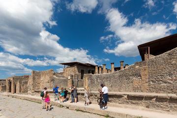 Viagem diurna a Pompeia e Mt Vesúvio...