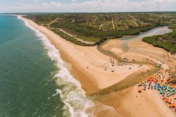 Amazing South Coast's Beaches
