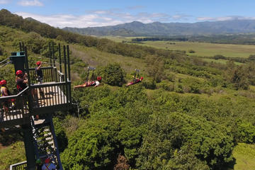 Treehouse Plus Zipline Course