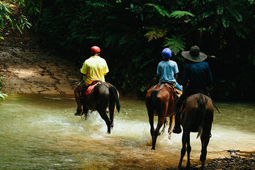 Horseback Riding and Waterfalls from Manuel Antonio