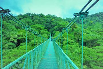 Monteverde Cloud Forest and Hanging...