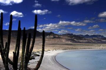 North La Paz Self-Drive Discovery Tour