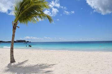 Excursion sur l'île de la Barbade...