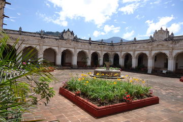 Walking Tour of Antigua pm