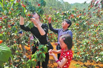 Organic Farm Dinner with Hot Spring Bathing or Seasonal Fruit-picking in Xian