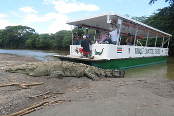 Jungle Crocodile Safari and Bird Watching Tour