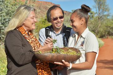 アリススプリングス デザート パーク(Alice Springs Deser…