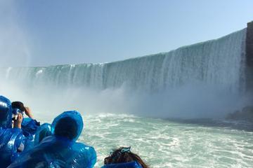 Excursion privée de luxe aux chutes...