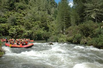 rafting-en-eaux-vives-sur-le-fleuve-rangitaiki-rotorua