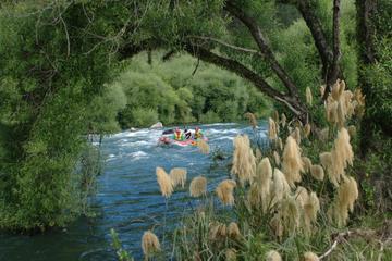 rafting-en-eaux-vives-sur-le-fleuve-rangitaiki