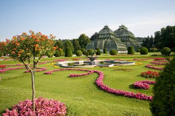 Forfait Vienne: croisière sur le Danube, dîner et concert au Palais...