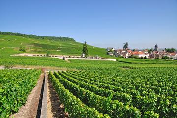 Wijnproeverijtour met kleine groep naar de Champagne-streek vanuit ...
