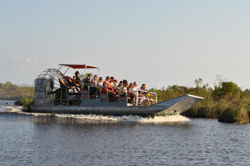 Day Trip Airboat Ride with Round-Trip Transportation from New Orleans near New Orleans, Louisiana