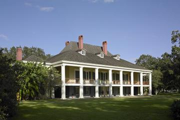 New Orleans Swamp Boat Ride and Plantation Tour