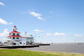 Tour combinado de Nueva Orleans: Tour por la ciudad, el Huracán...