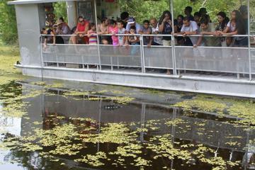 Visita turística a pantano y Bayou con paseo en barco desde Nueva...